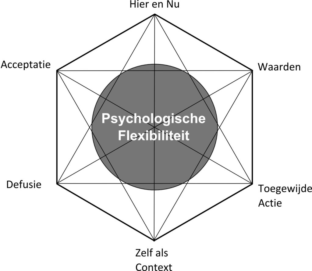 ACT Hexaflex